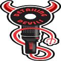 Detailing Devils Noida Sector 8