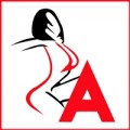 Adultsextoyindia Pvt Ltd
