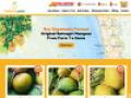 Buy Mangoes Online