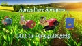 Buy Agricultural Sprayer